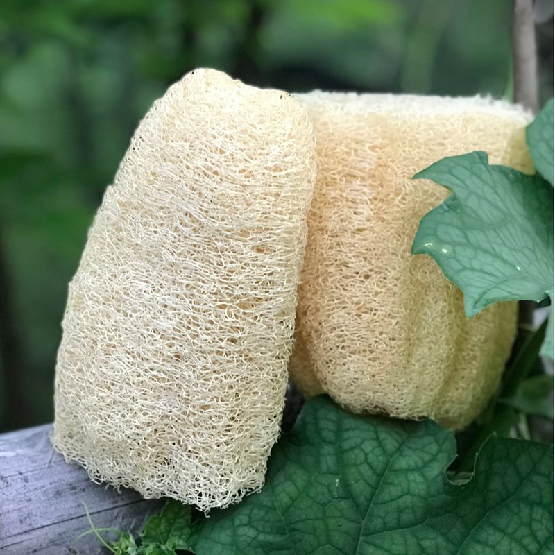 Cleansing Loofah / Gentle Exfoliating / Natural Loofah
