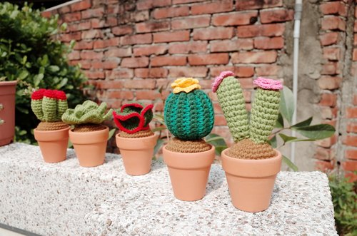 "Warm good mood ""cactus small pots"" wool hand made (single basin - small flowers)"