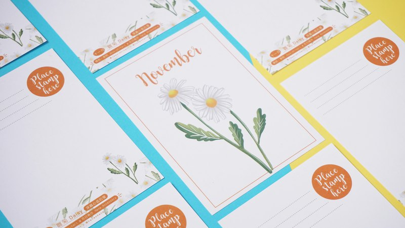 The Birth Flower Postcard - November Daisy
