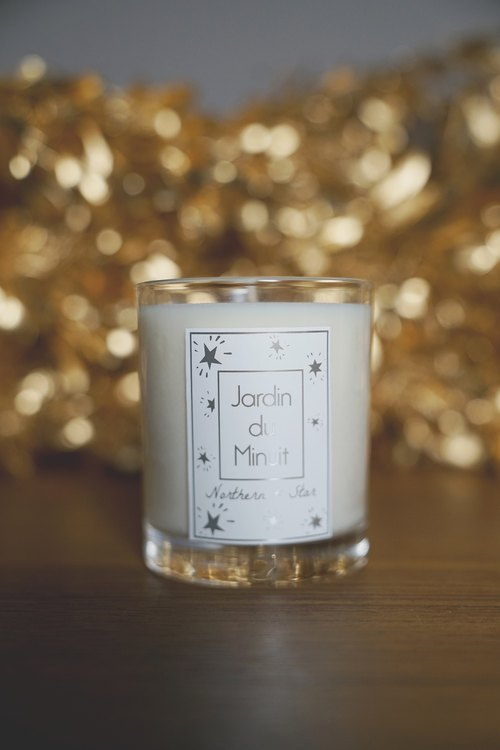 Midnight handmade soy candle garden - Polaris