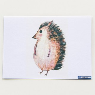 Postcard I am a little hedgehog, not a porcupine Hedgehog postcard