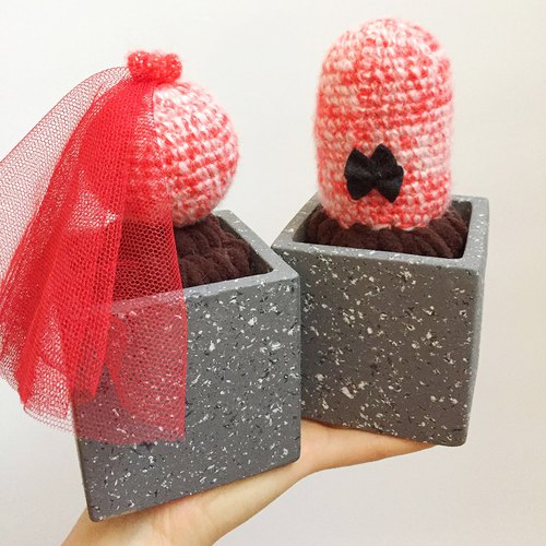 WARMPLANT Valentine's Day Mr. and Mrs. Handmade yarn cactus woven potted