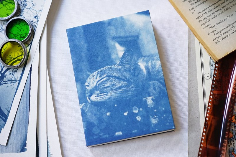 Hand sun and blue notebook - cat caterpillar
