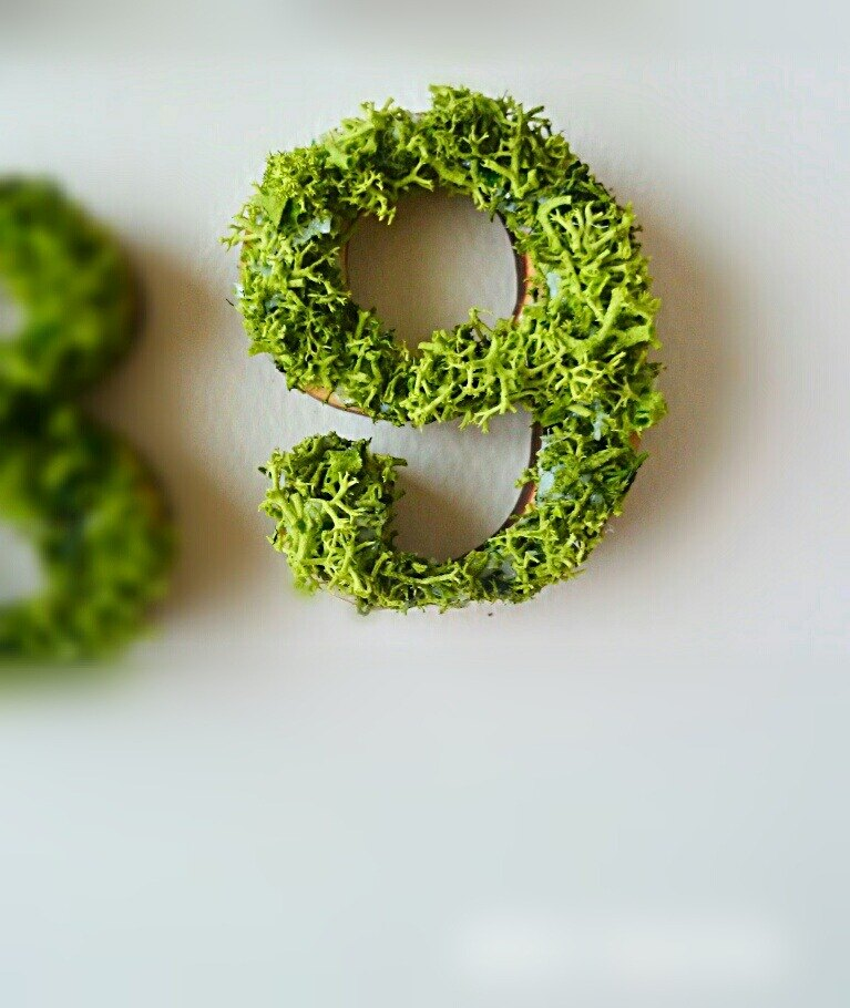 "Wooden numbers objects (Moss) 5cm ""9"" × 1 point"