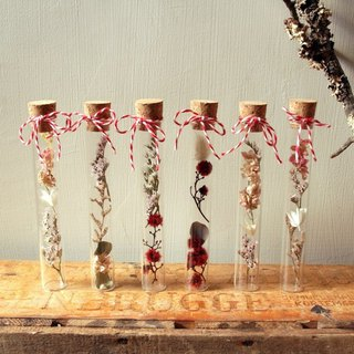Dry vase dry flower gift (not picked) (3 sets)