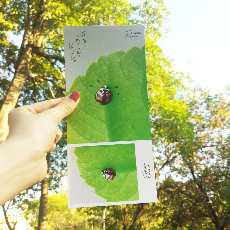 [Stub Postcard] - Step by Step - Dream-Recommended - Ladybug / Snail