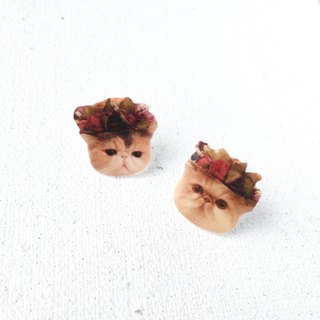 Custom Made House of Cats Pets 925 Silver Earrings