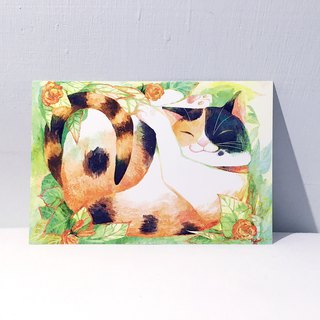 Lazy tricolor cat/double-sided postcard postcard