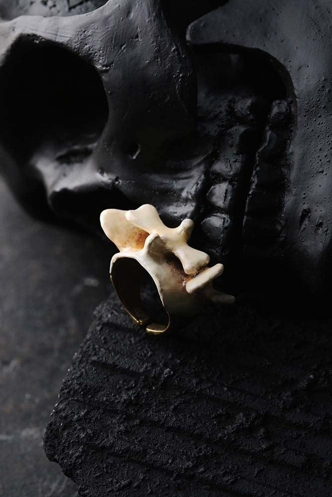 Backbone - painted version - Ring by Defy