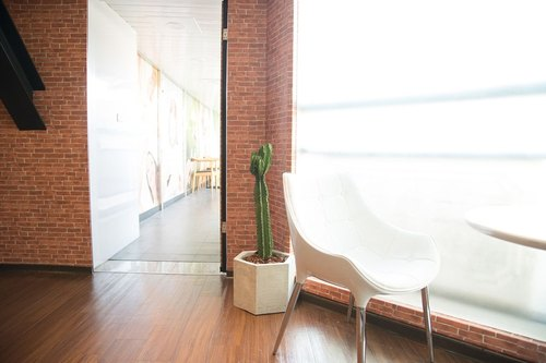 Large cactus | Pentagon cement pot God Pavilion | Promoter moved to open the home floor fleshy potted plants
