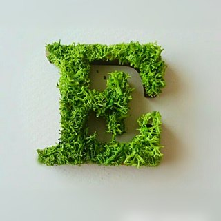 "Wooden alphabet objects (Moss) 5cm ""E"" × 1 point"