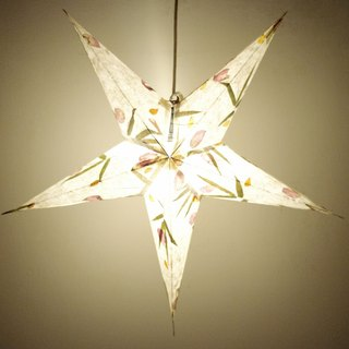Christmas bazaar Christmas gift exchange gifts handmade limited paper handmade star light / Star Light / Star Light / Origami light / night light - dried flowers in the moon under the stars Star sense of the sky