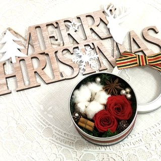 l Merry Christmas Opening the tin box Non-flowering l*Christmas*Christmas*Merry Christmas*Decoration*Non-flowering. Stellar flowers. Immortal flowers*Exchange gifts