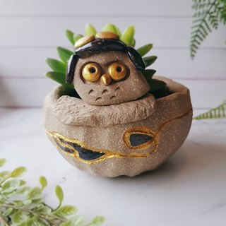 P-49 Love Flight Eagle │Yoshino Hawk x Owl Pottery Flower Pure Handmade Design Succulent Healing Cute Unique Gift