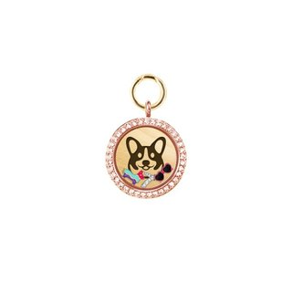 UniQ Personalized Pet Name Brand - Rose Gold (L medium and large dogs)