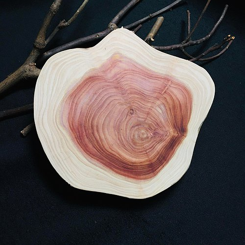 Carvy_Dragon Juniper (Taiwan) Wooden Coaster【L】-B