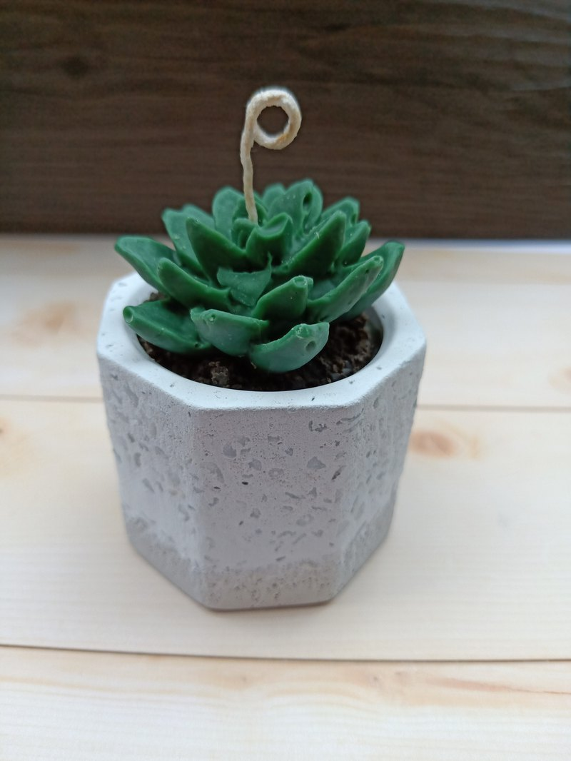 Succulent potted candle