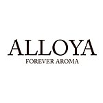 Designer Brands - alloyalife