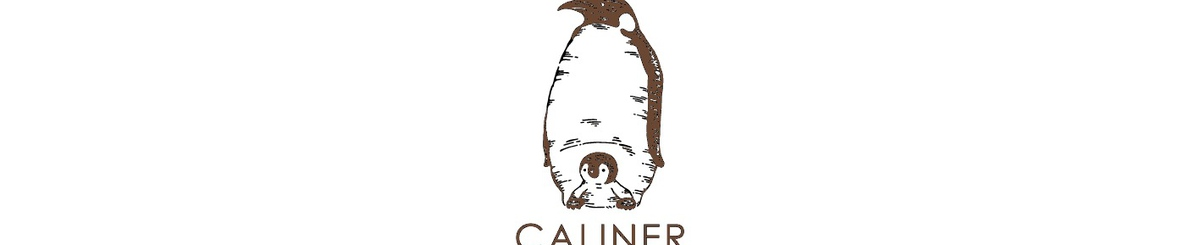 From Japan - caliner