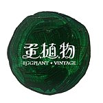 From Taiwan - Eggplant Vintage