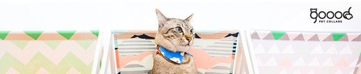From Singapore - Goood Pet Collars
